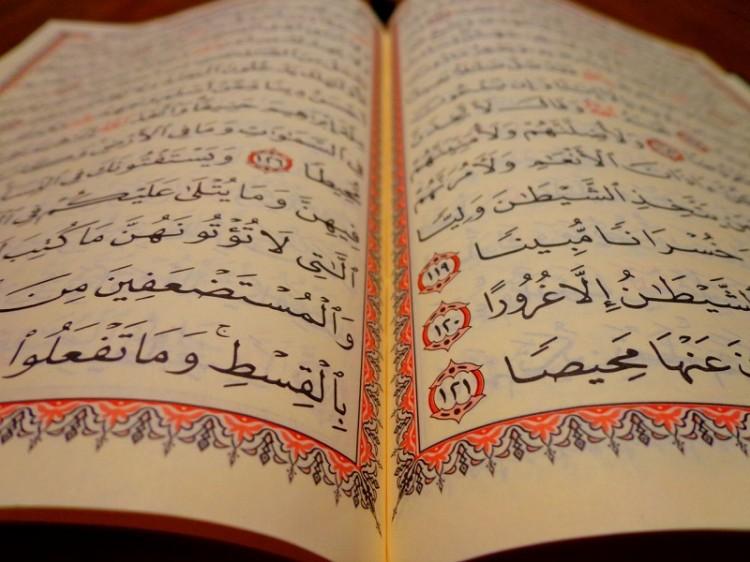 Koranwissenschaften