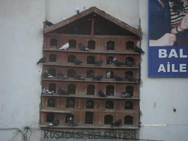 Türkisch-osmanische Vogelhäuser